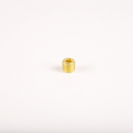 1/4'' Allen Head Brass Plug 002-250 | Outback import