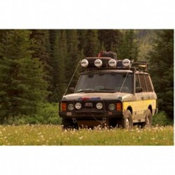 Winch bar ARB Range Rover >95